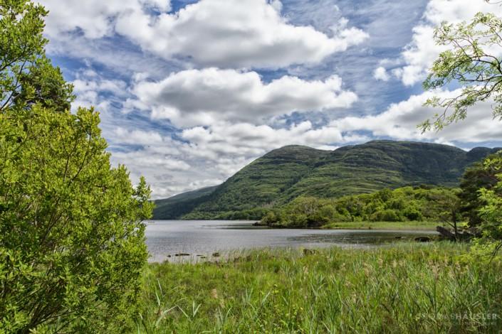 Irland - Der über 100 km² große Nationalpark grenzt an die Stadt Killarney und umfasst die drei Seen Lough Leane, Muckross Lake und Upper Lake, die insgesamt eine Fläche von 22 km² des Parks ausmachen.